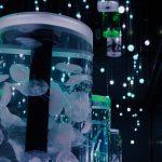 都市型水族館アクアパーク品川で「花」がテーマの初夏イベント!クラゲやイルカに癒されよう