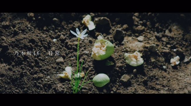 乃木坂46 22ndシングル収録のアンダー楽曲「日常」のMusic Videoが公開