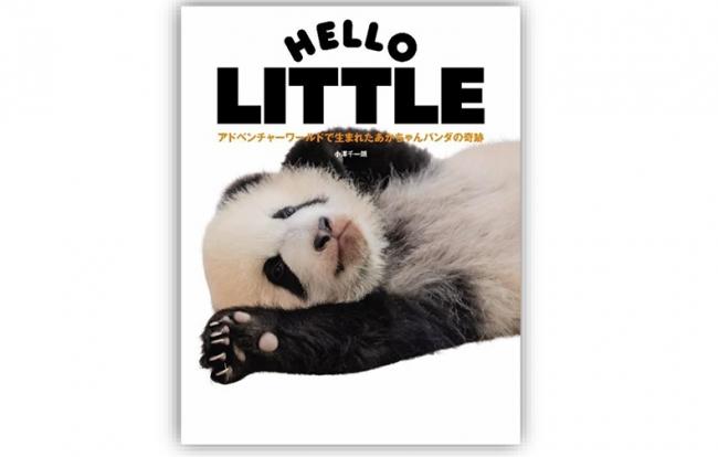 ジャイアントパンダのグラビア本「HELLO PANDA」シリーズ 最新刊が登場!「彩浜(さいひん)」の魅力がたっぷり
