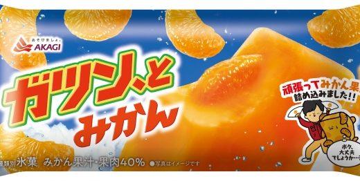本気の「ガツン、とみかん」が登場!?みかん果肉量1.3倍の大満足仕様で6月25日より発売