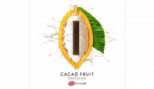 新チョコレート登場「キットカット ショコラトリー カカオフルーツチョコレート」、2019年秋発売決定